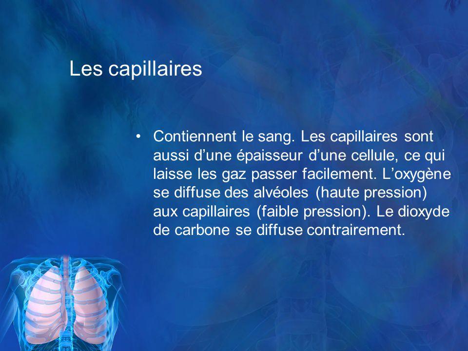 Les capillaires
