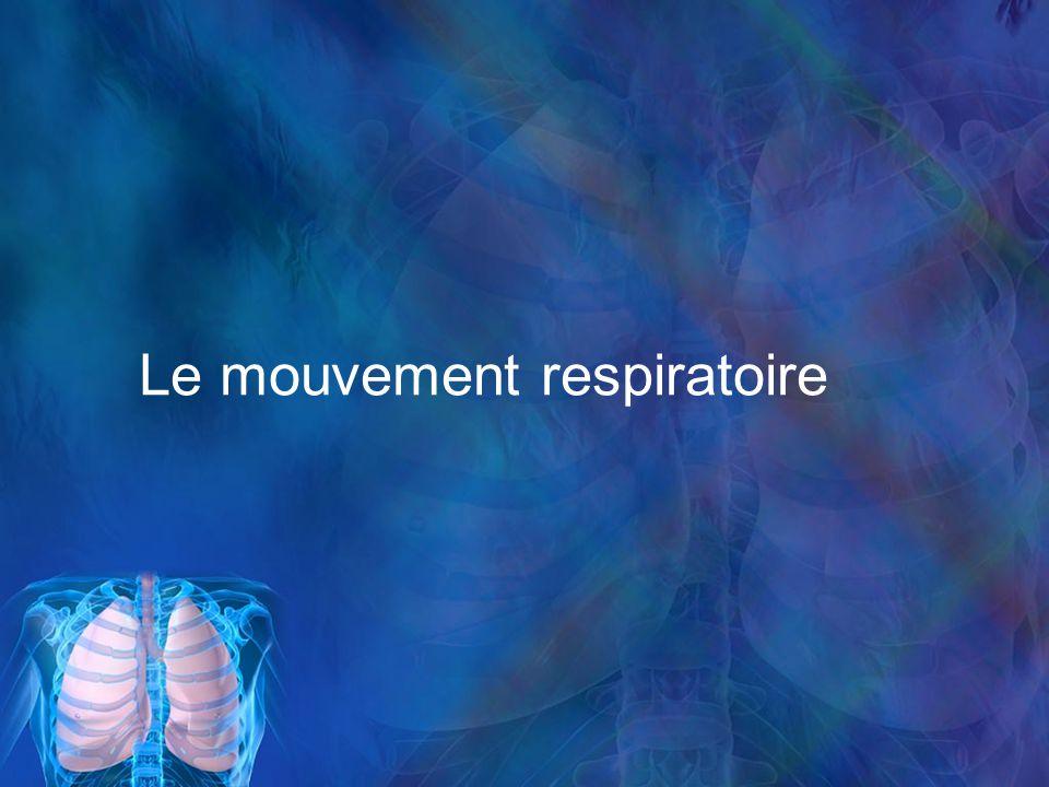 Le mouvement respiratoire