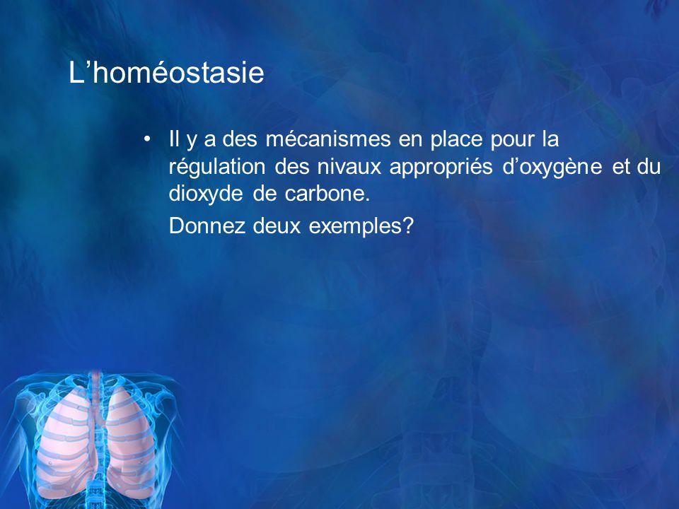 L'homéostasie Il y a des mécanismes en place pour la régulation des nivaux appropriés d'oxygène et du dioxyde de carbone.