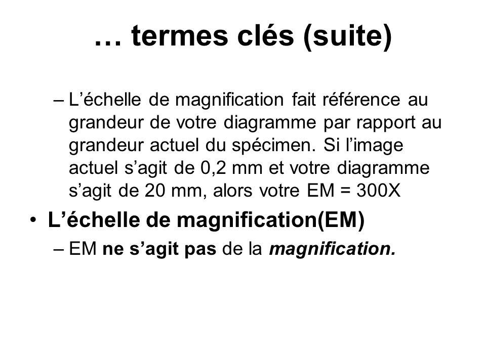 … termes clés (suite) L'échelle de magnification(EM)