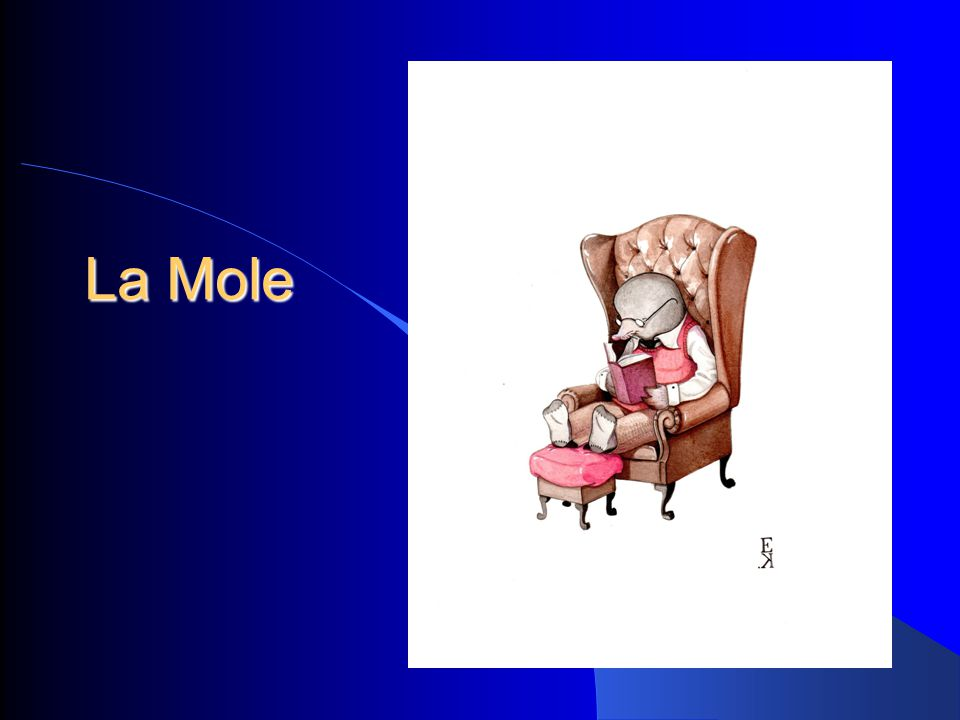 La Mole 1
