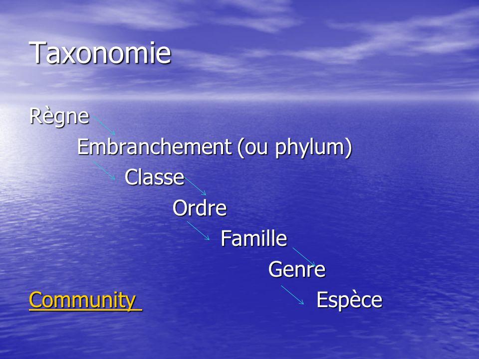 Taxonomie Règne Embranchement (ou phylum) Classe Ordre Famille Genre Community Espèce