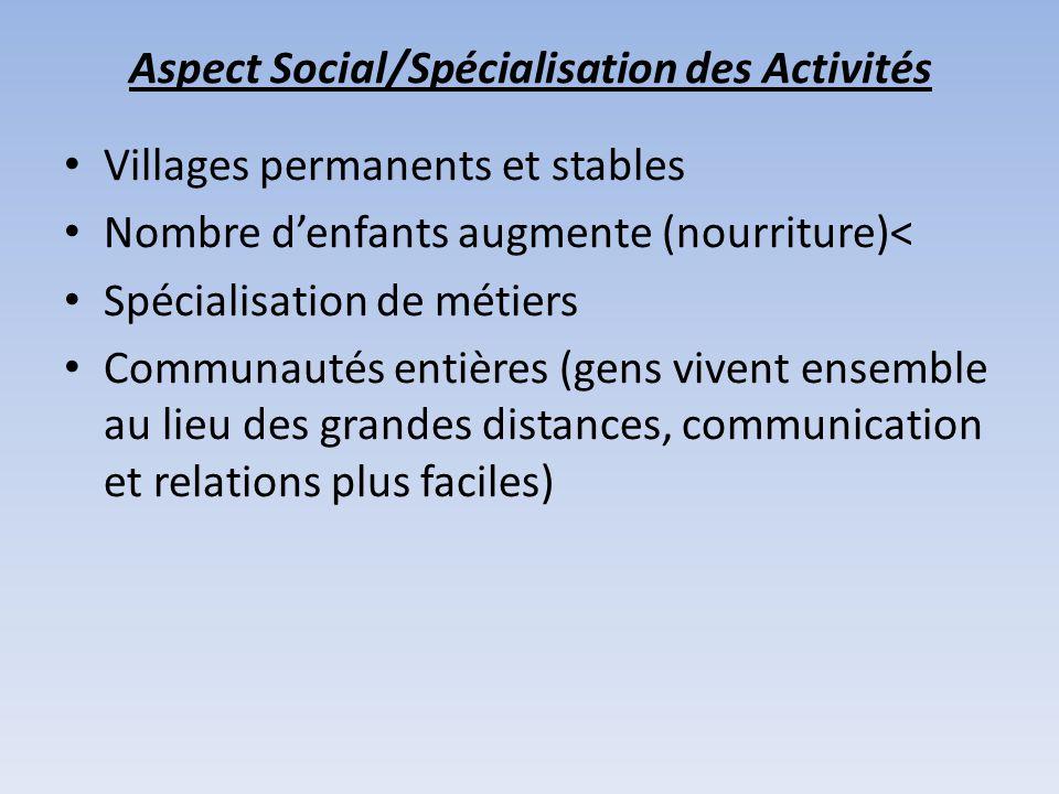 Aspect Social/Spécialisation des Activités