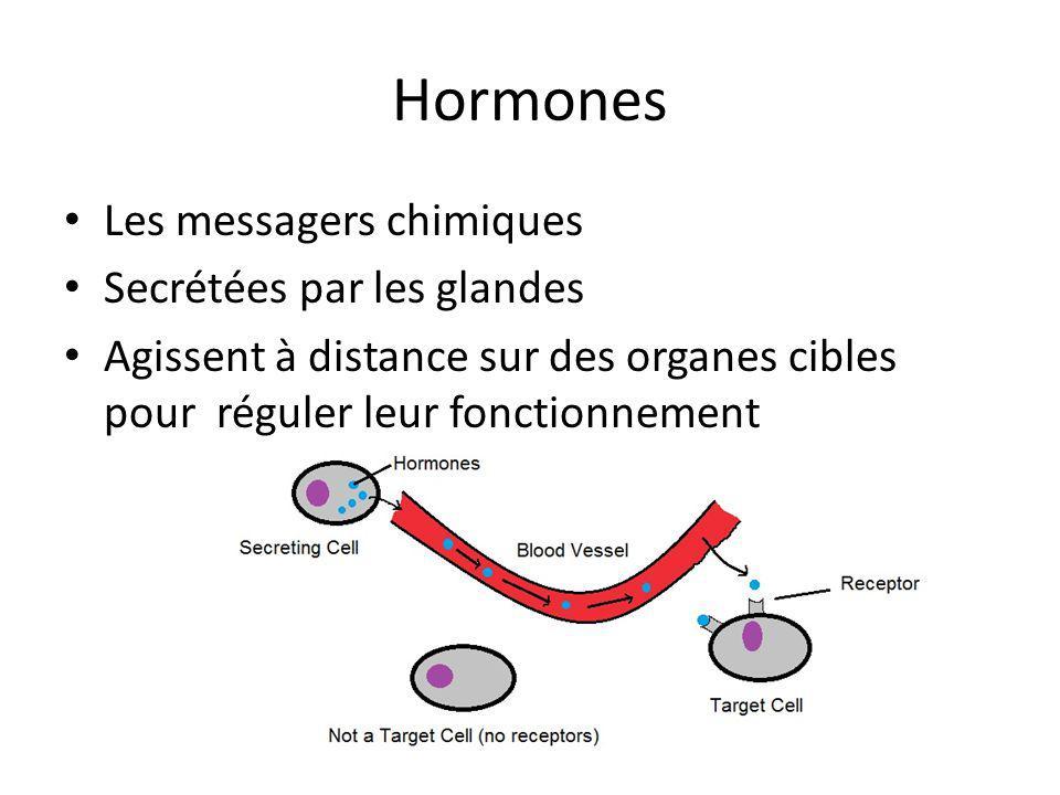 Hormones Les messagers chimiques Secrétées par les glandes