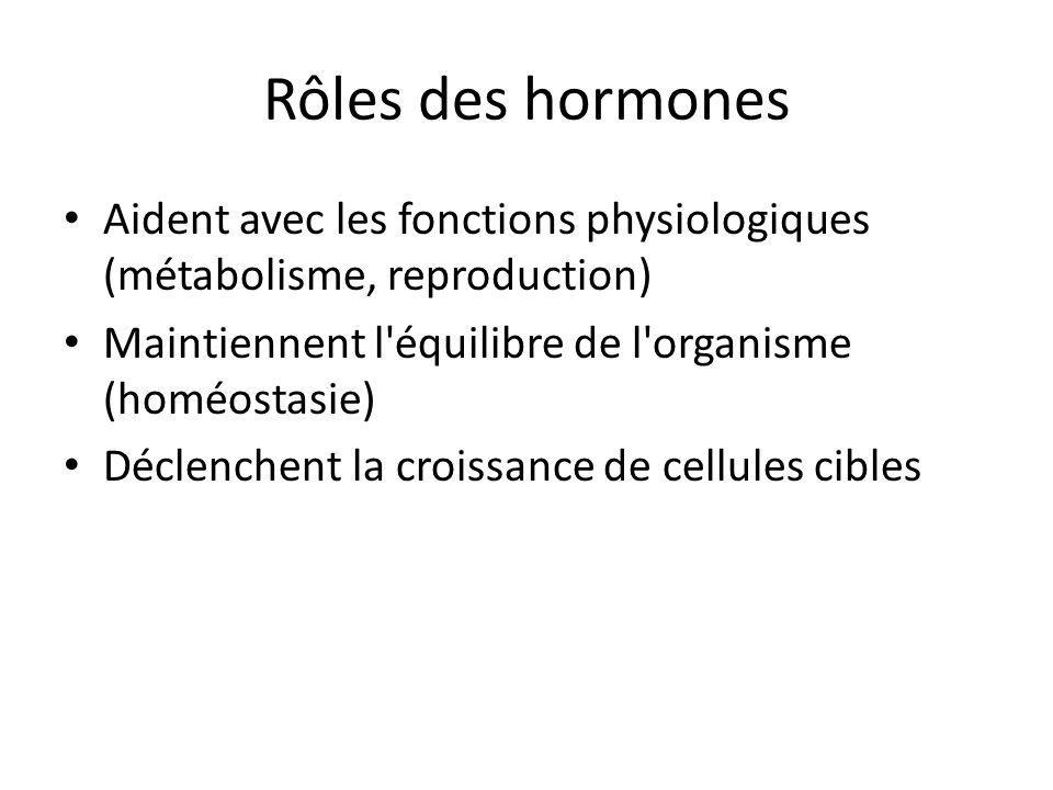 Rôles des hormones Aident avec les fonctions physiologiques (métabolisme, reproduction) Maintiennent l équilibre de l organisme (homéostasie)