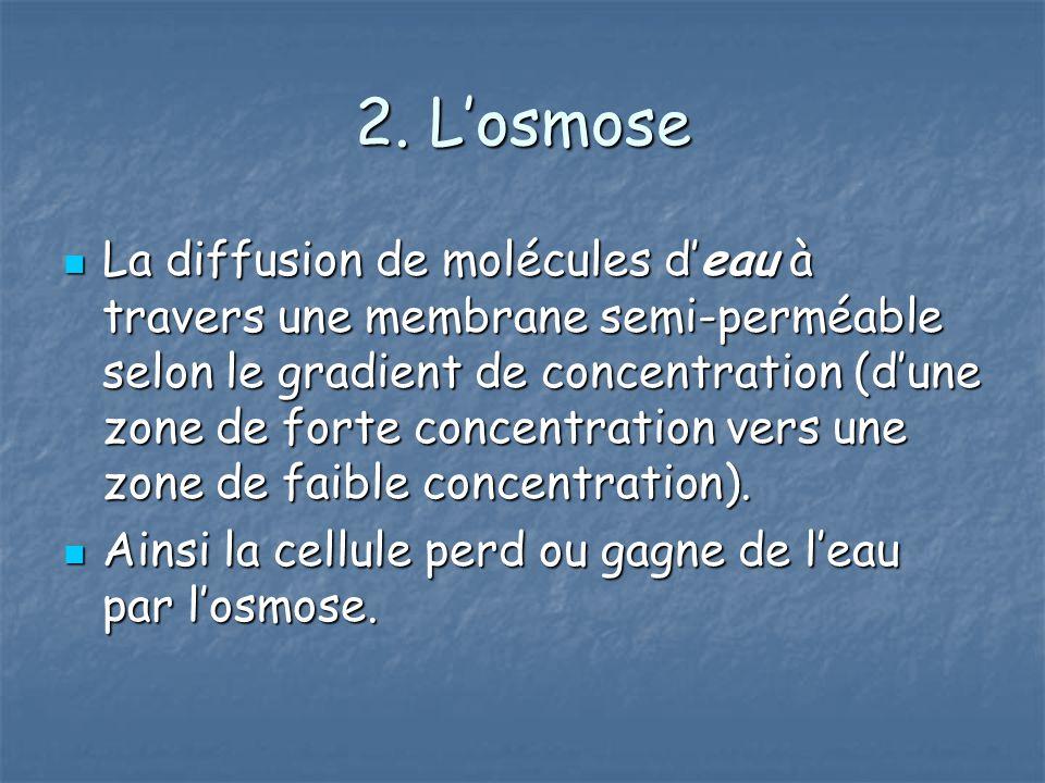 2. L'osmose