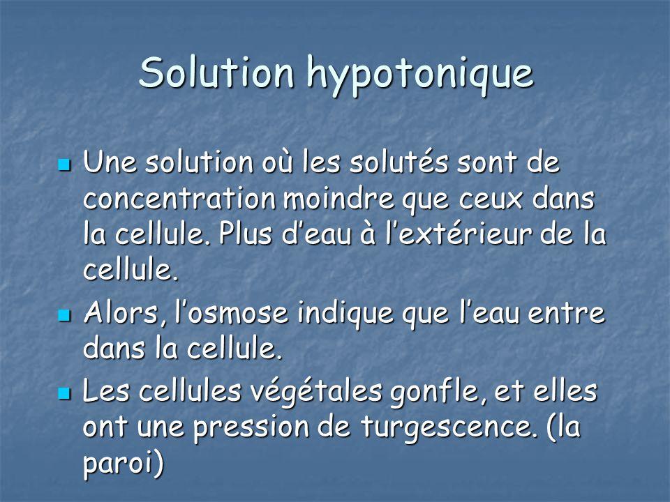 Solution hypotonique Une solution où les solutés sont de concentration moindre que ceux dans la cellule. Plus d'eau à l'extérieur de la cellule.
