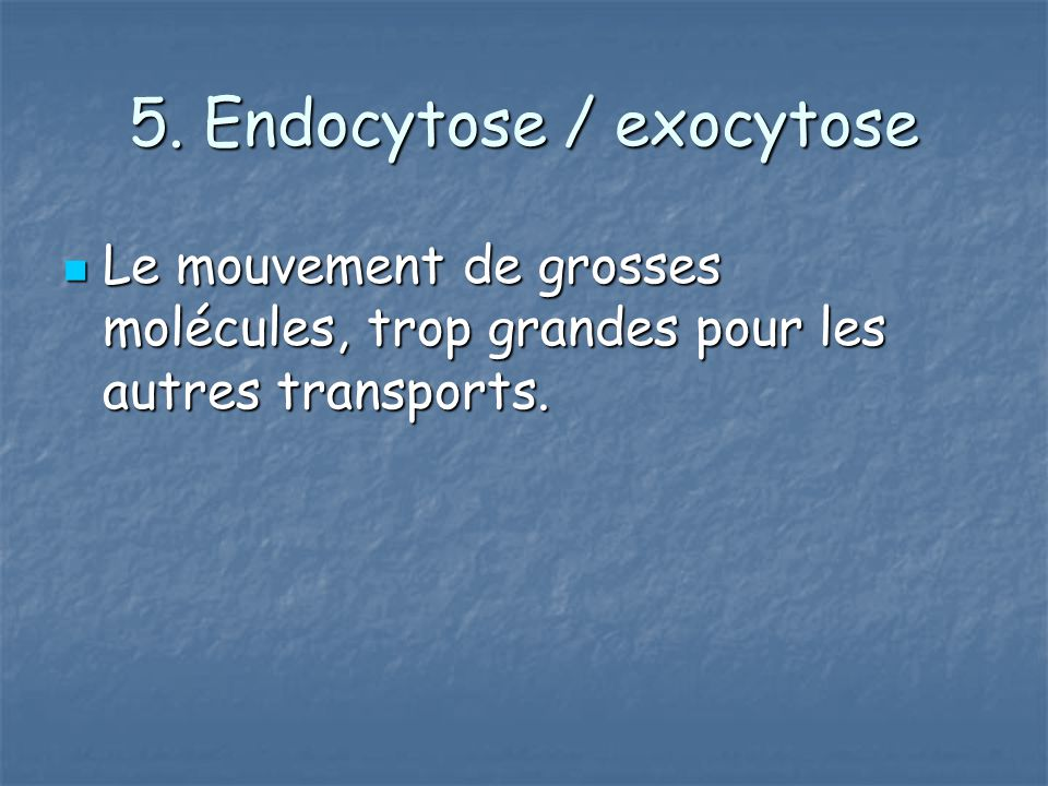 5. Endocytose / exocytose