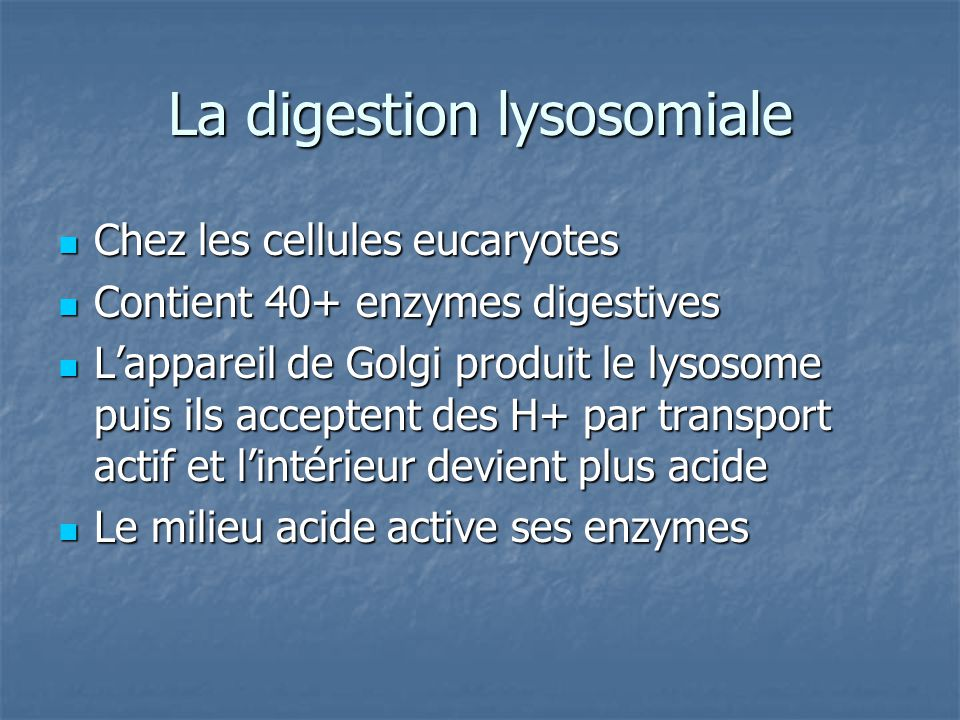 La digestion lysosomiale