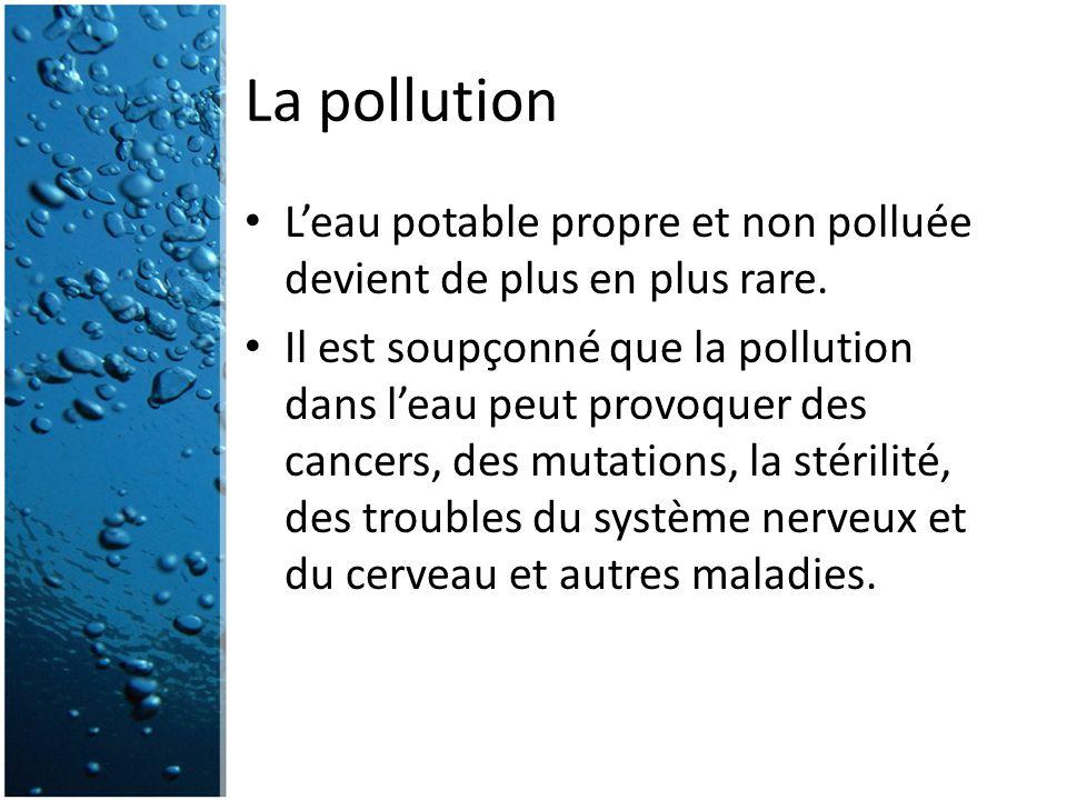 La pollution L'eau potable propre et non polluée devient de plus en plus rare.