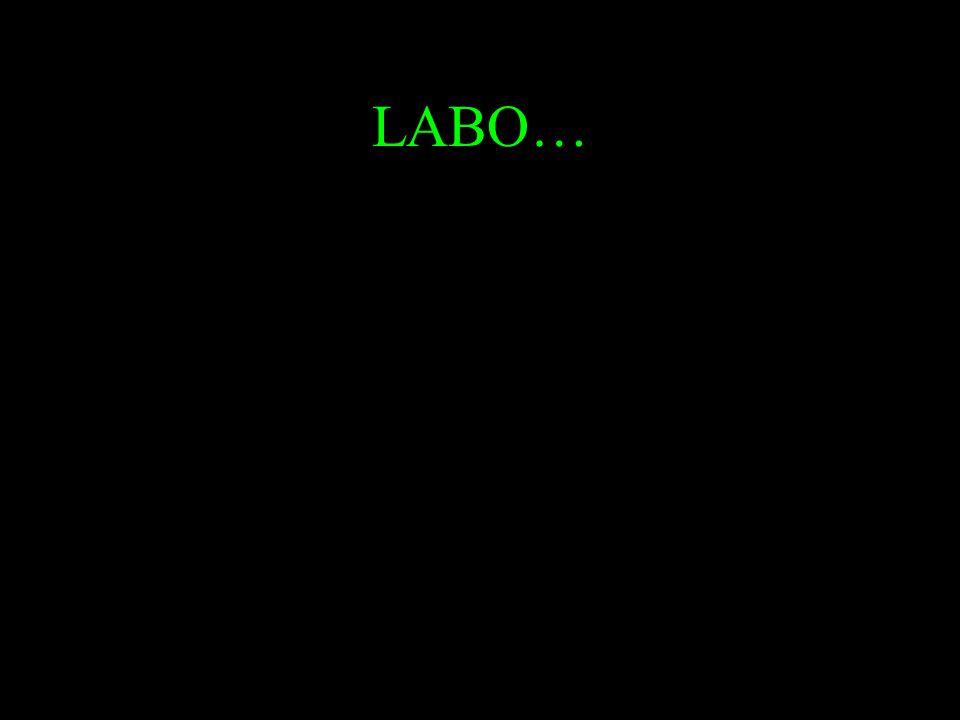 LABO…