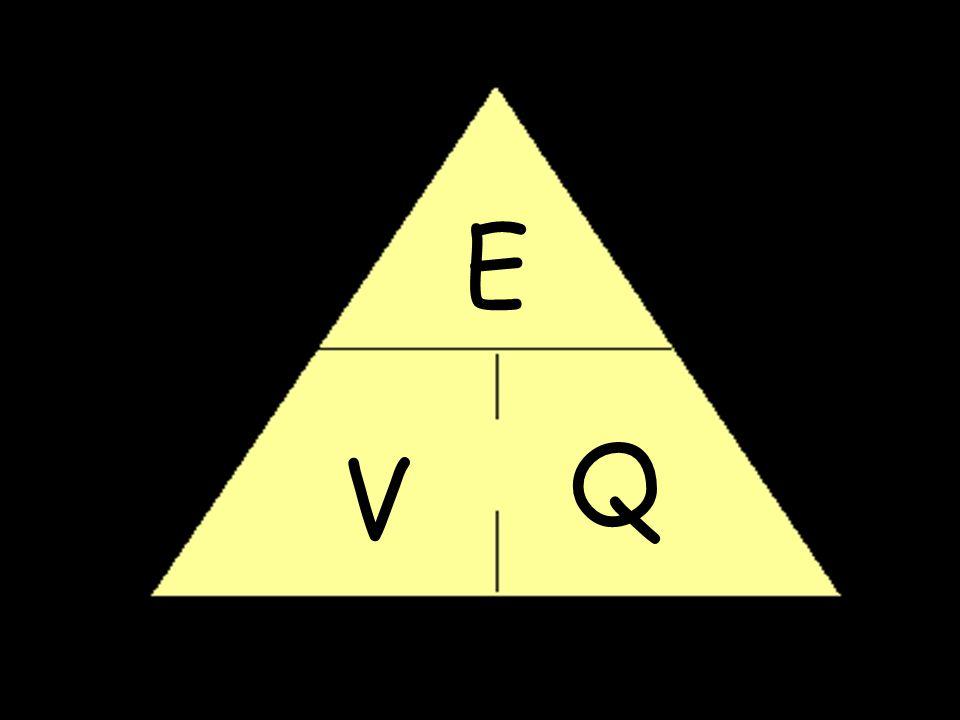 E Q V