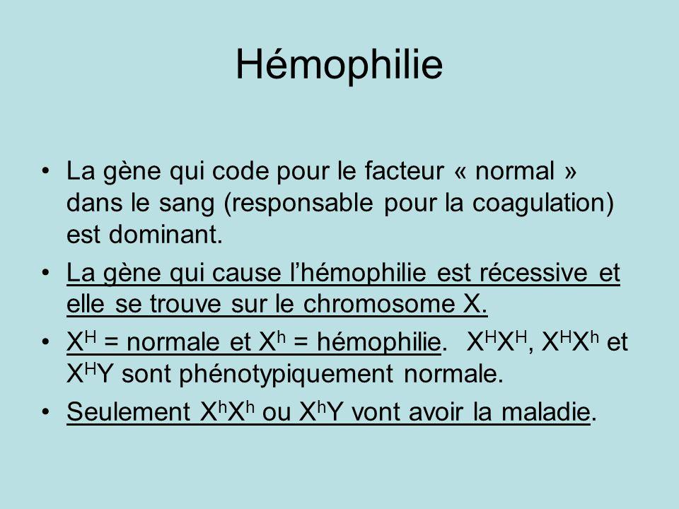 Hémophilie La gène qui code pour le facteur « normal » dans le sang (responsable pour la coagulation) est dominant.