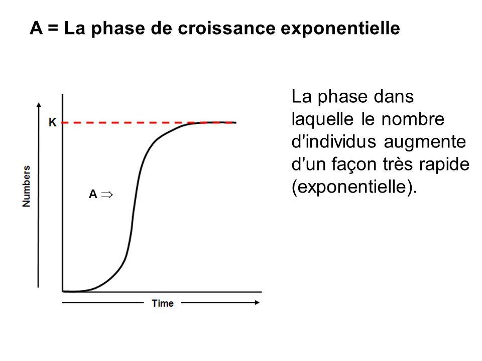 A = La phase de croissance exponentielle
