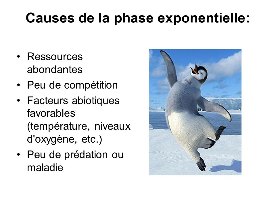 Causes de la phase exponentielle: