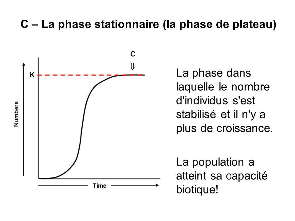 C – La phase stationnaire (la phase de plateau)