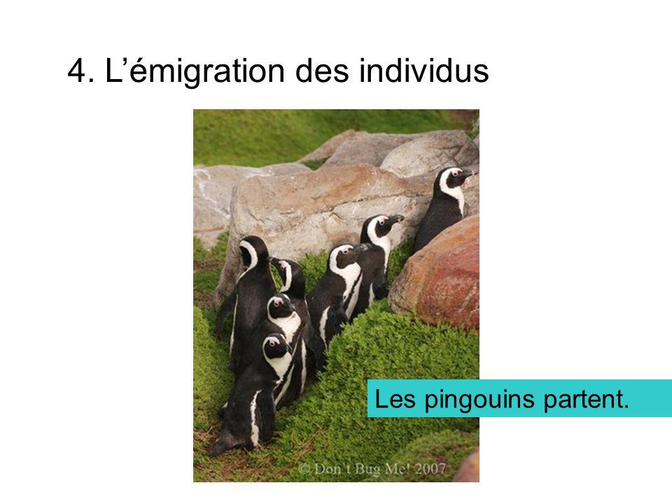4. L'émigration des individus