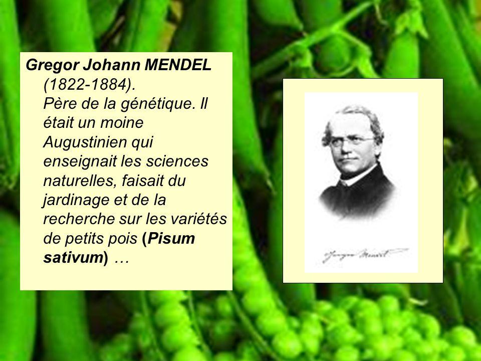 Gregor Johann MENDEL (1822-1884). Père de la génétique