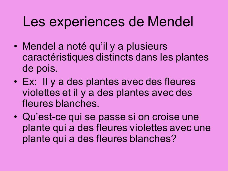 Les experiences de Mendel