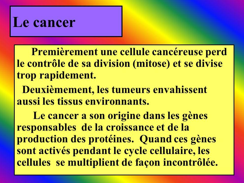Le cancer Premièrement une cellule cancéreuse perd le contrôle de sa division (mitose) et se divise trop rapidement.