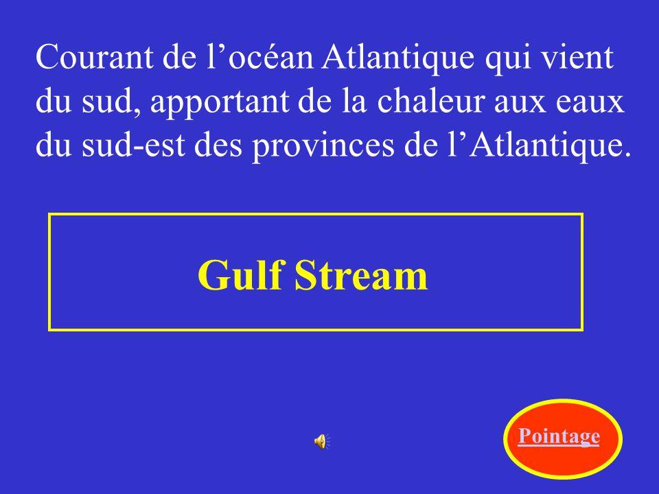 Gulf Stream Courant de l'océan Atlantique qui vient