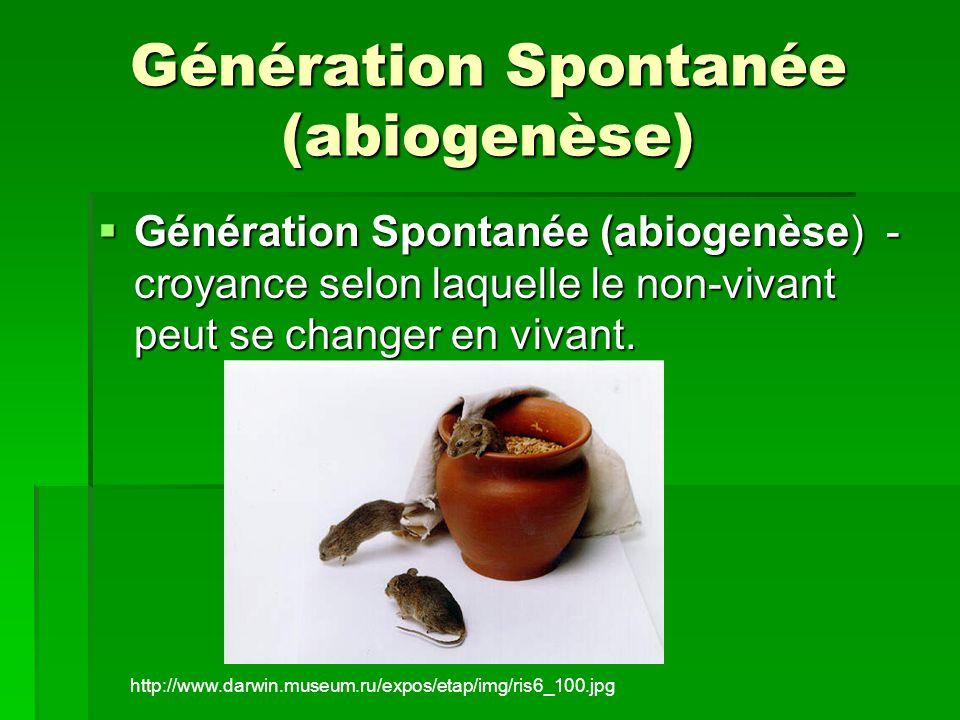 Génération Spontanée (abiogenèse)