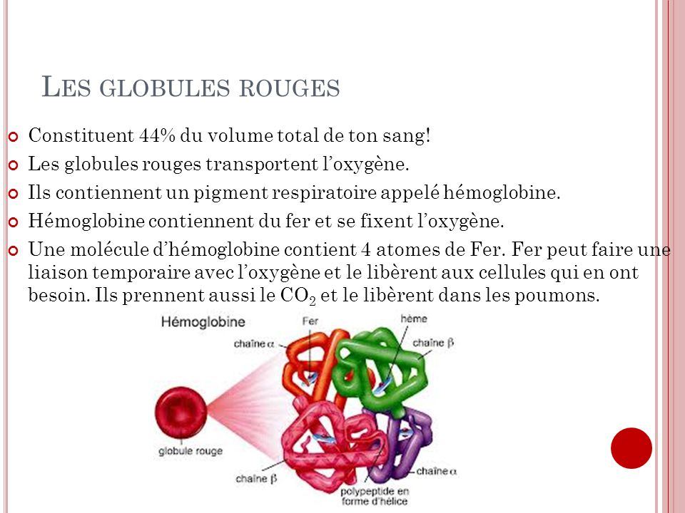 Les globules rouges Constituent 44% du volume total de ton sang!