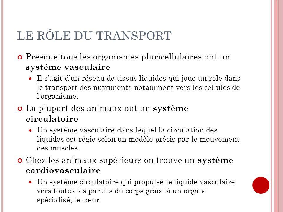 LE RÔLE DU TRANSPORT Presque tous les organismes pluricellulaires ont un système vasculaire.