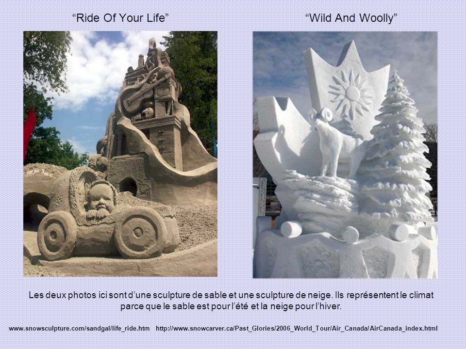 Ride Of Your Life Wild And Woolly