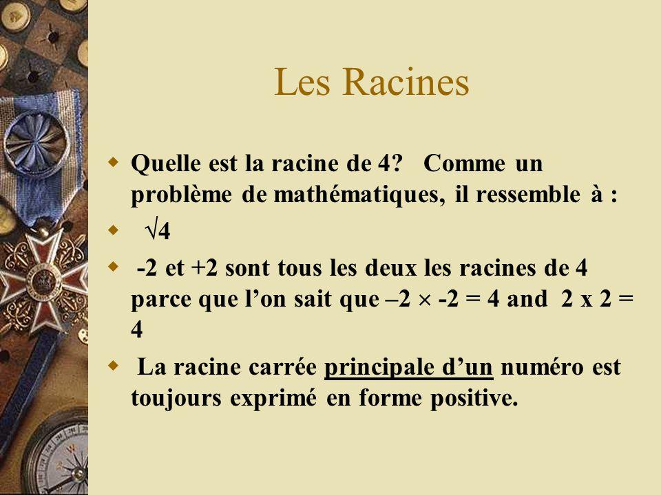 Les Racines Quelle est la racine de 4 Comme un problème de mathématiques, il ressemble à : 4.