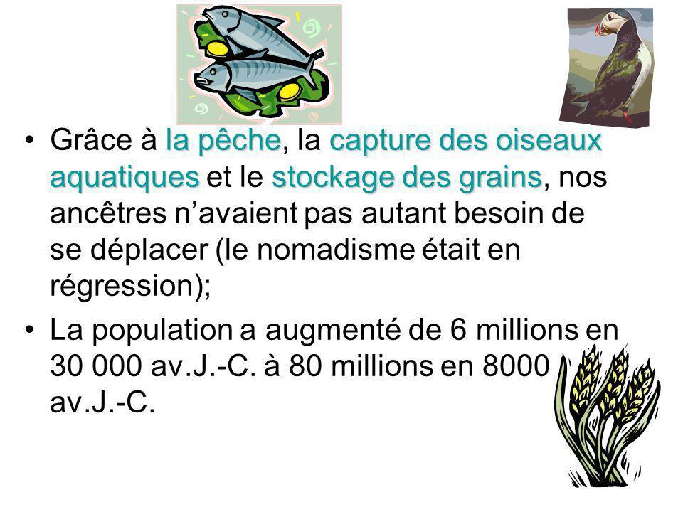 Grâce à la pêche, la capture des oiseaux aquatiques et le stockage des grains, nos ancêtres n'avaient pas autant besoin de se déplacer (le nomadisme était en régression);