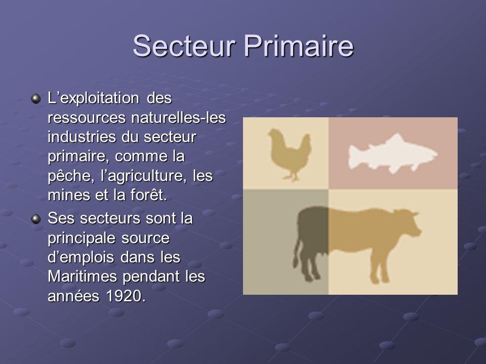 Secteur Primaire L'exploitation des ressources naturelles-les industries du secteur primaire, comme la pêche, l'agriculture, les mines et la forêt.