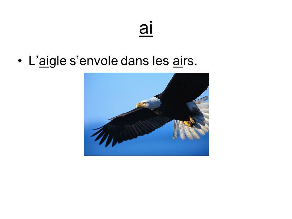 ai L'aigle s'envole dans les airs.