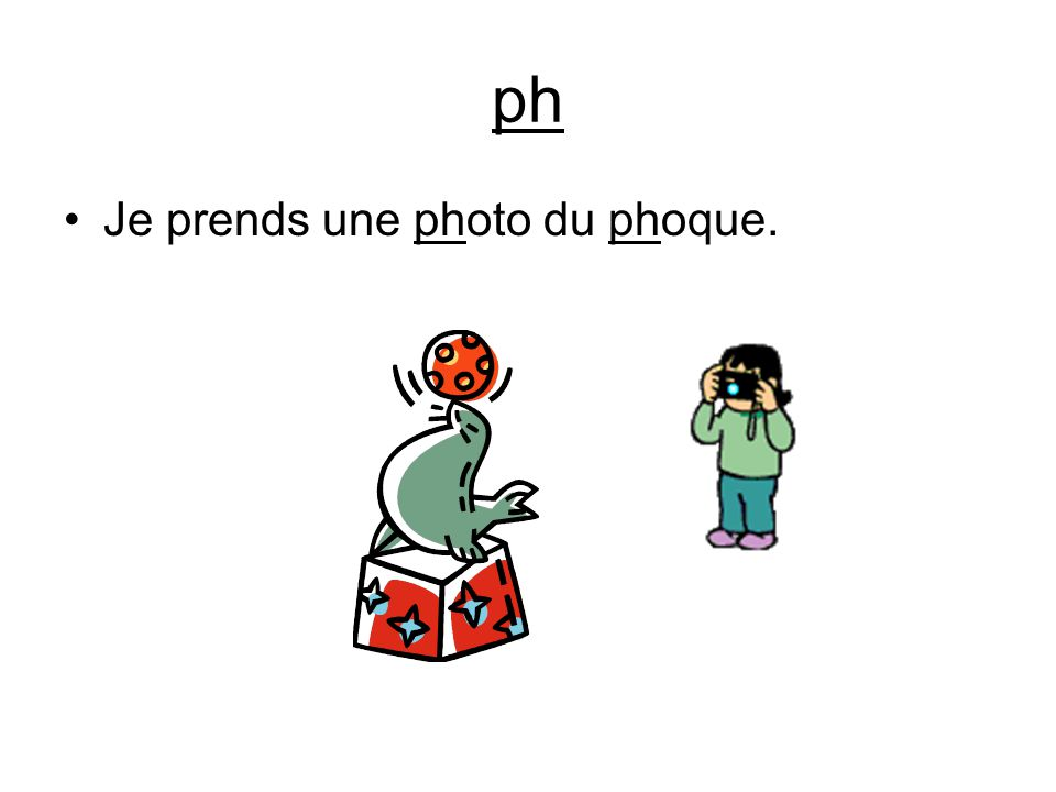 ph Je prends une photo du phoque.