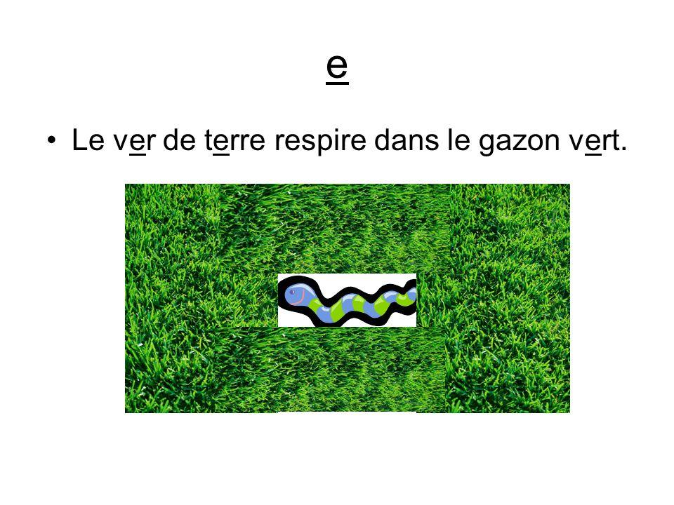 Le ver de terre respire dans le gazon vert.