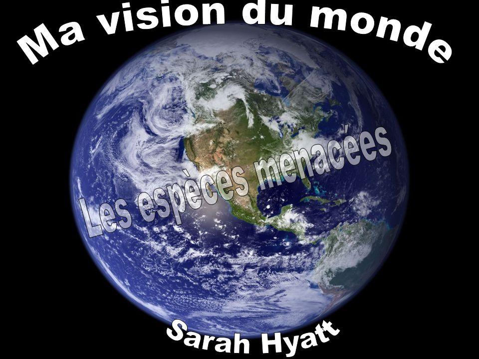 Ma vision du monde Les espèces menacées Sarah Hyatt