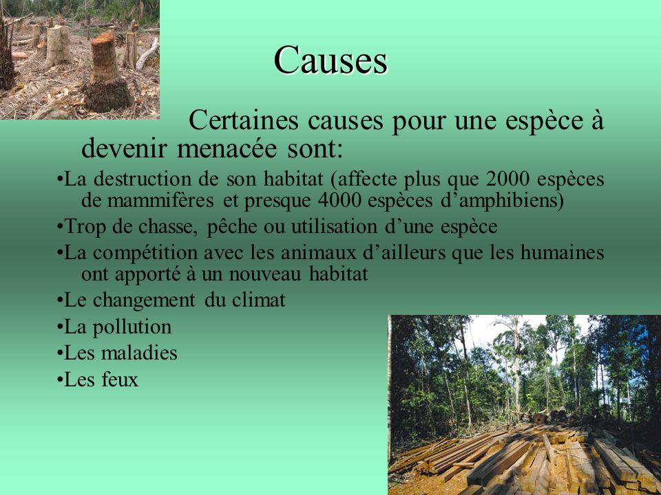 Causes Certaines causes pour une espèce à devenir menacée sont: