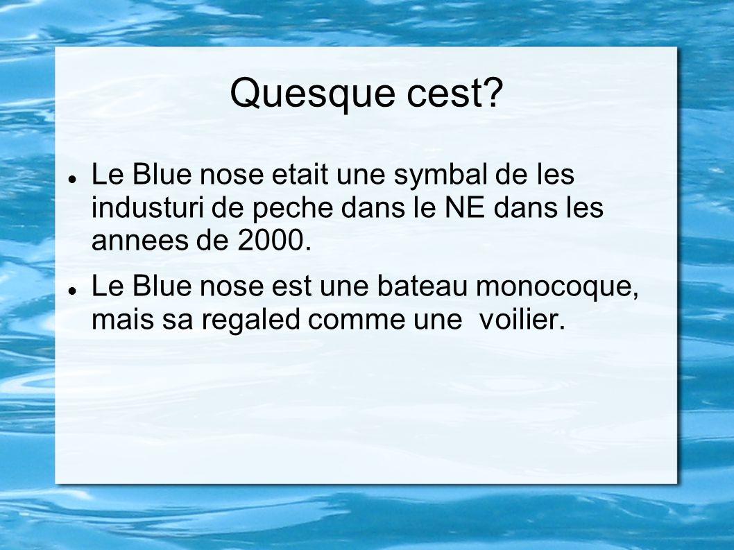 Quesque cest Le Blue nose etait une symbal de les industuri de peche dans le NE dans les annees de 2000.