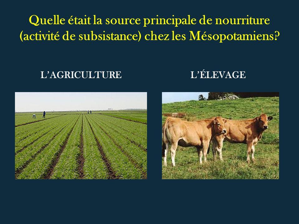 Quelle était la source principale de nourriture (activité de subsistance) chez les Mésopotamiens