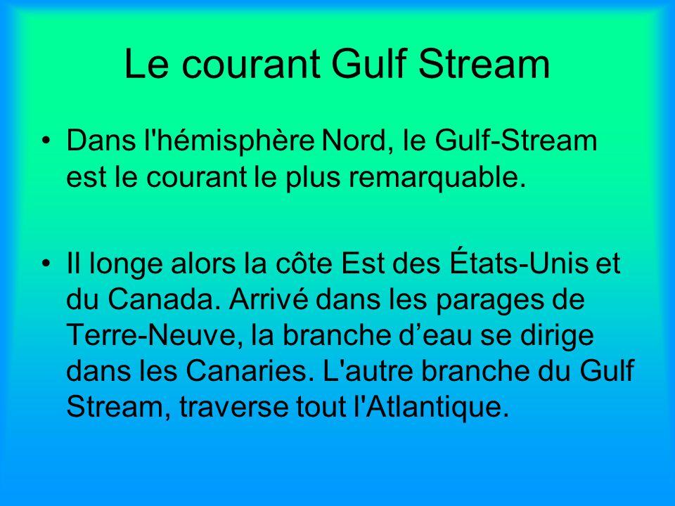 Le courant Gulf Stream Dans l hémisphère Nord, le Gulf-Stream est le courant le plus remarquable.