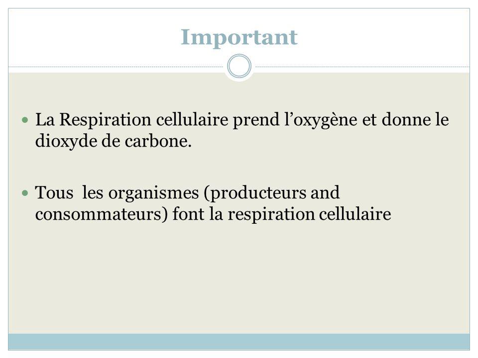 Important La Respiration cellulaire prend l'oxygène et donne le dioxyde de carbone.