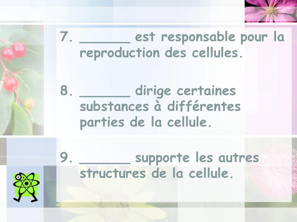 ______ est responsable pour la reproduction des cellules.