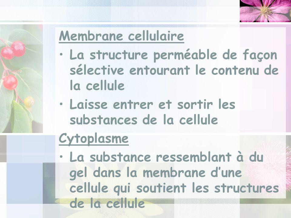 Membrane cellulaire La structure perméable de façon sélective entourant le contenu de la cellule.