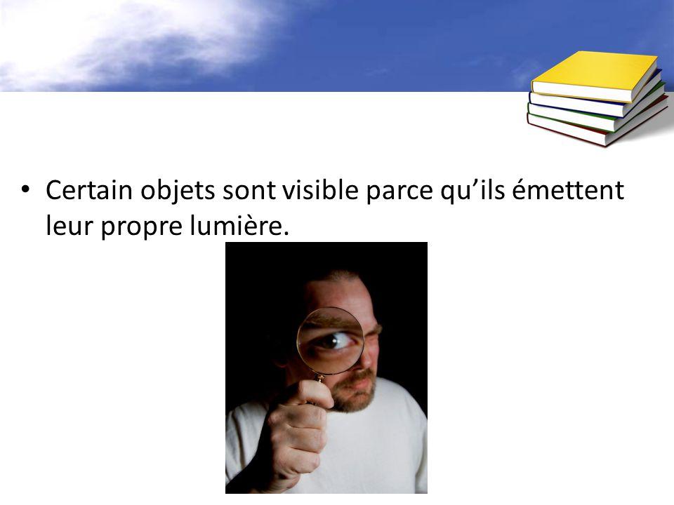 Certain objets sont visible parce qu'ils émettent leur propre lumière.