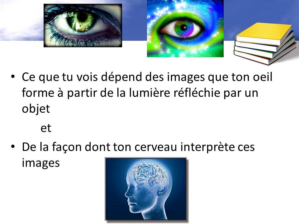 Ce que tu vois dépend des images que ton oeil forme à partir de la lumière réfléchie par un objet