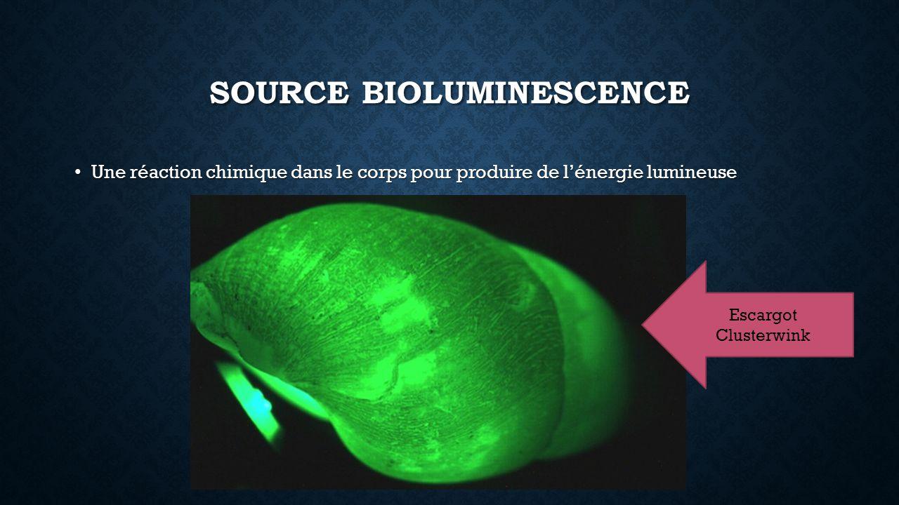 Source bioluminescence