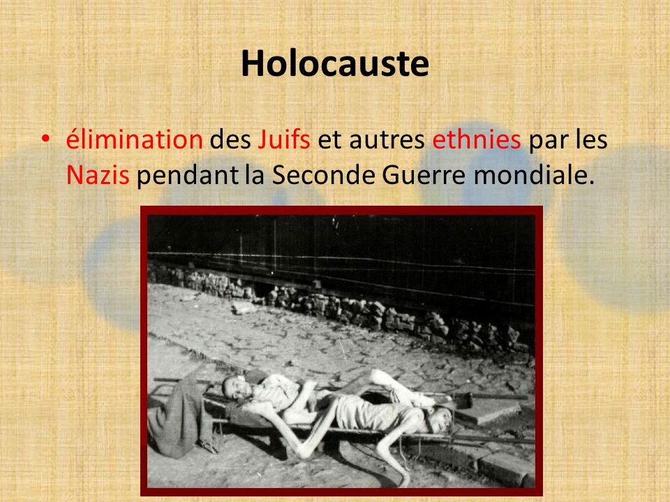 Holocauste élimination des Juifs et autres ethnies par les Nazis pendant la Seconde Guerre mondiale.