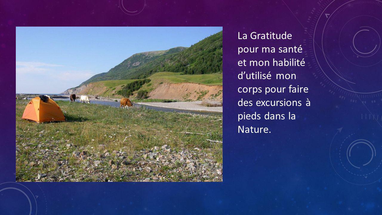La Gratitude pour ma santé et mon habilité d'utilisé mon corps pour faire des excursions à pieds dans la Nature.