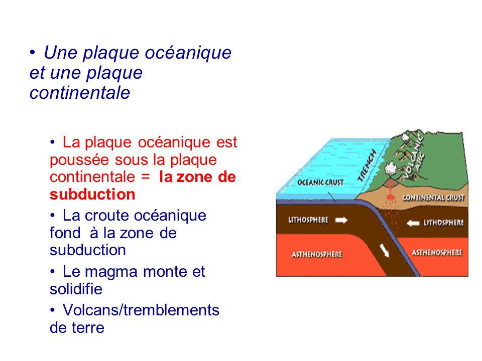Une plaque océanique et une plaque continentale