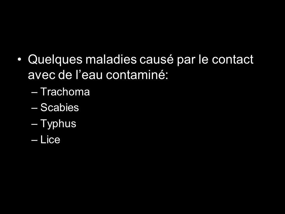 Quelques maladies causé par le contact avec de l'eau contaminé: